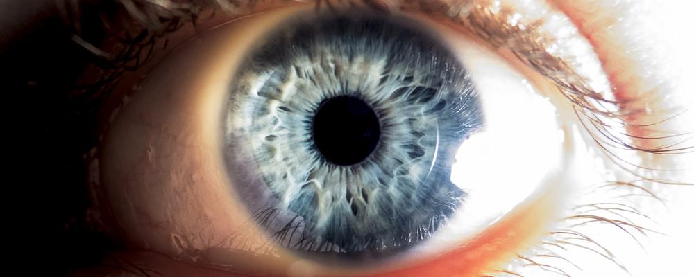 Close up of human eye_